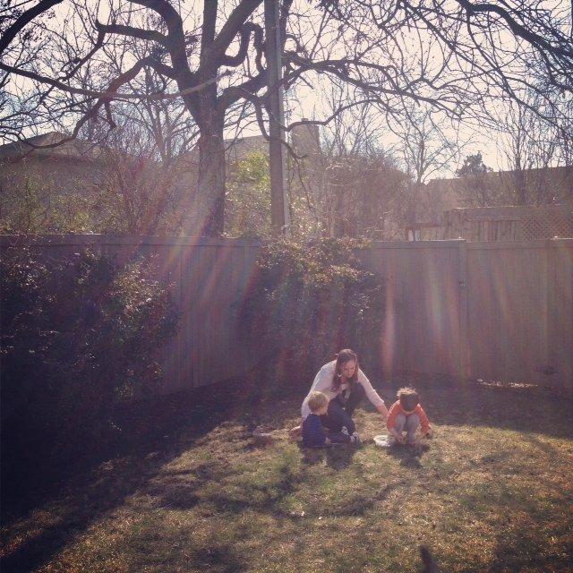 backyardpecans