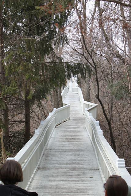 bridgetothebeach